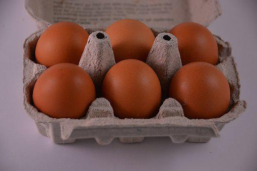 Hen, Eggs, Kitchen, Egg Carton, Eat, Gastronomy