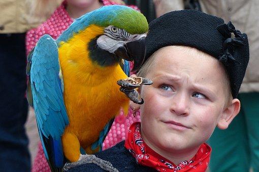 Urk, Boy, Parrot, Costume