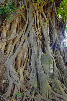 Asia, Thailand, Travel, Ayuthaya