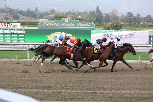 Finish Line, Horse Race, Thoroughbred, Jockey
