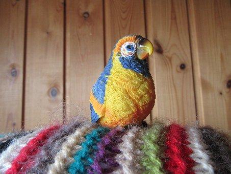 Bird, Rainbow Bird, Rainbow, Colors, Colored, Feathers
