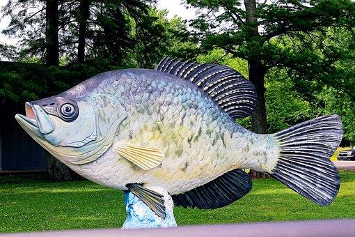 Reelfoot, Lake, Fish, Crappie, Statue