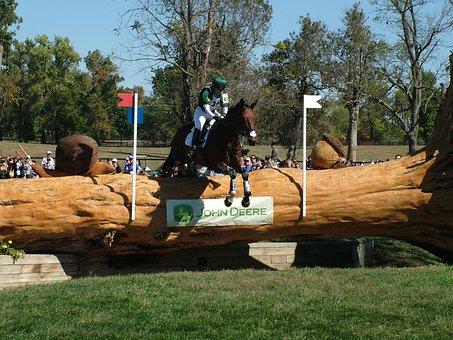 Weg, World Equestrian Games, Cross Country