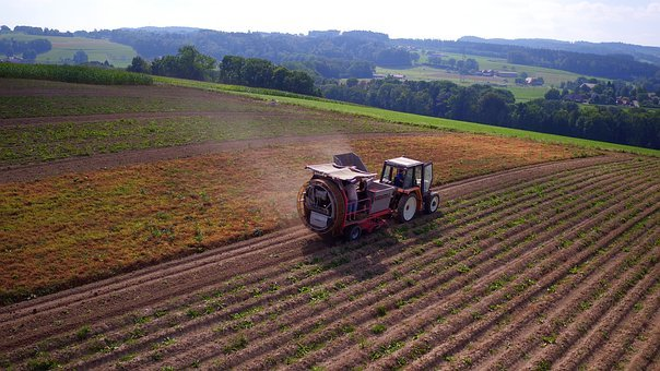 Aerial View, Agriculture, Potatoes Listening, Ferlens
