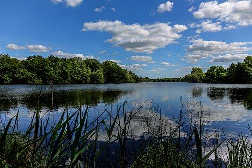 Nettetal, Dewitt, Lake, Mirroring, Landscape, Summer