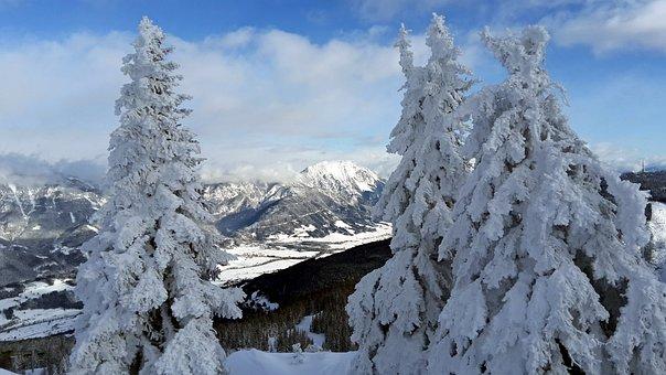 Alps, Mountains, Austria, Landscape, Snow, Trees, Hill