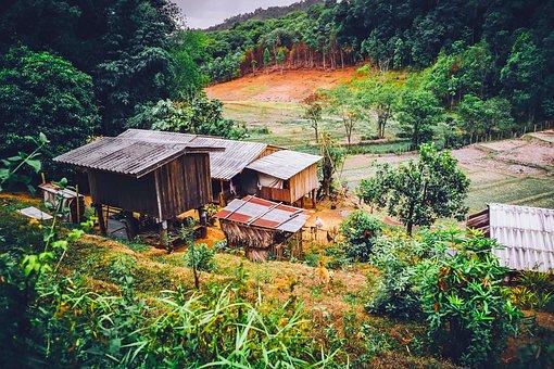 Thailand, Hut, Home, Shack, Buildings, Farm, Tropics