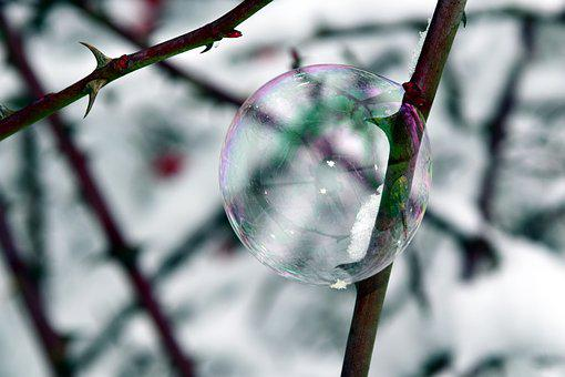 Bubble, Soap Bubble, Winter, Thorns, Bubble And Thorns