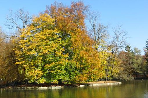 Müchnen, Autumn, Hinterbrühl