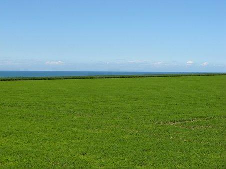 Landscape, Sea, Normandy, Spineless-les-roses