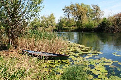 Boat, Swamp, Hutovo Blato