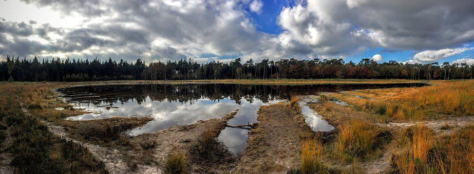 Mast, Forest, Breda