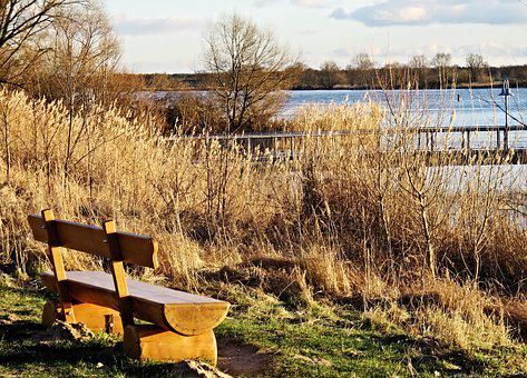 Nature, Elbe, River, River Landscape, Natural