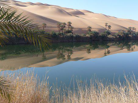 Oasis, Libya, Lake, Rest, Mirroring, Desert, Nature