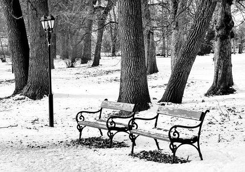 Winter, Park, Pad, Snow, Serenity, January, Nature