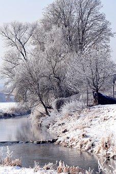 Winter, Winter Mood, Wintry, Snowy, Trees, Romantic