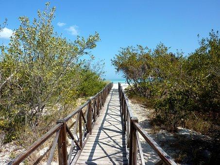 Cuba, Cayococo, Sea, Caribbean, Summer, Web