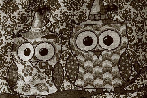 Owls, Birds, Animal, Design, Cartoon, Cute, Wildlife