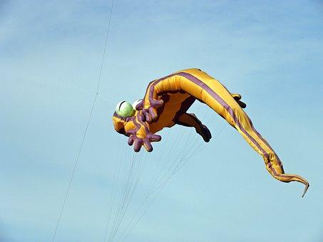 Kite, Lizard Kite, Flying Kite