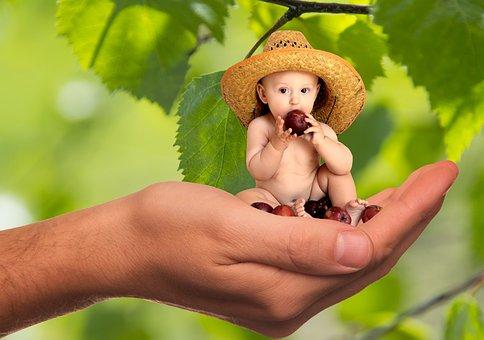 Vitamins, Fruit, Nutrition, Child, Baby, Responsibility