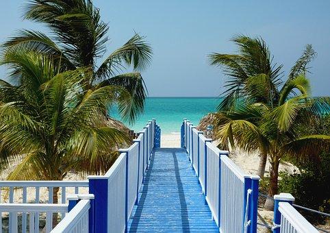 Cuba, Caribbean, Sea, Web, Summer, Holiday, Palm Trees