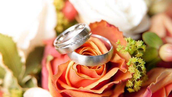 Rings, Rose Bloom, Bride, Bouquet, Jewellery