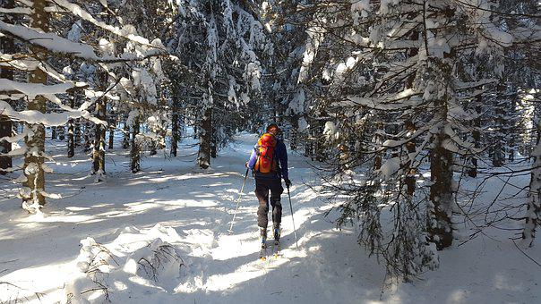 Backcountry Skiiing, Black Forest, Ski, Winter, Snow