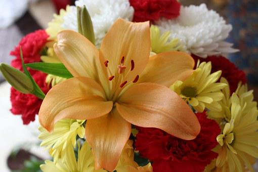 Flower, Lily, Yellow, Bouquet, Carnation, Floral