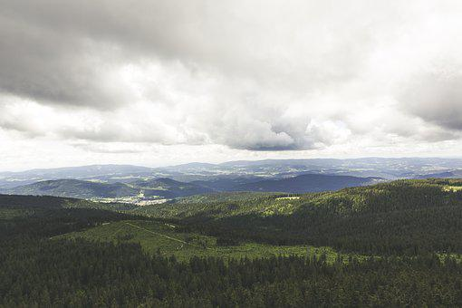 Bavarian Forest, View, Distant View, Forest, Viewpoint