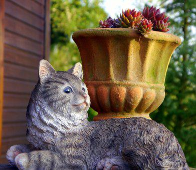 Cat, Garden, Rural, Nature, Summer, In The Free, Idyll