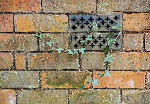 Brick, Wall, Ivy, Ventilator, Neglect, Neglected, Decay