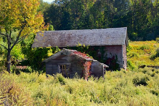 Old Building, Rural, Old, Building, Wood, Exterior