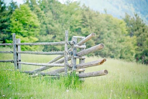 Pasture, Fence, Pasture Fence, Meadow, Wooden Posts