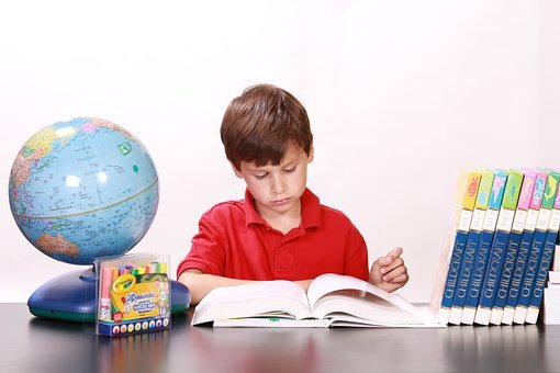 Boy, Reading, Studying, Books, Children, Young, Small
