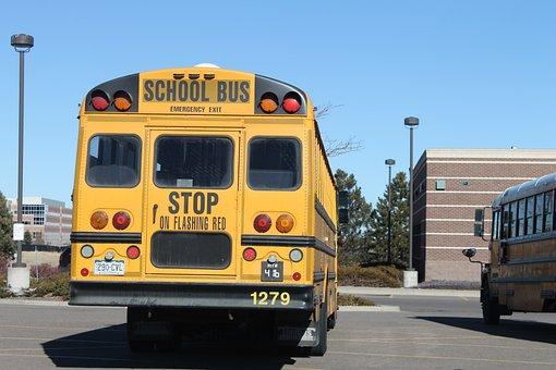School, Bus, Transportation, Yellow, Vehicle, Transport