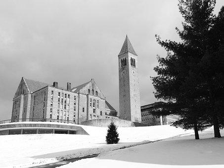 Cornell University, College, U, University, Cornell