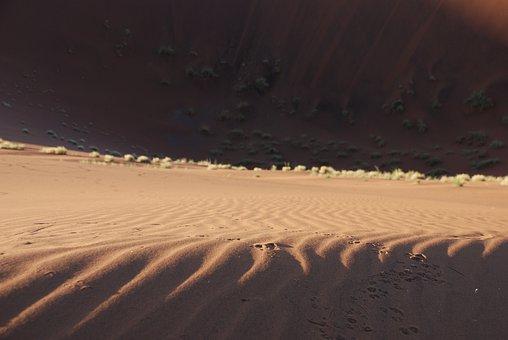 Dune, Sand, Desert, Waves, Wave Pattern, Contrast