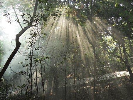 Guilin, Yongfu, Fengshan Park, Incident Light