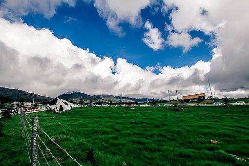 Green, Ecosystem, Cloud, Environment, Nature, Ecology