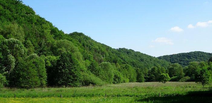 Dolinka Będkowska, Poland, Landscape