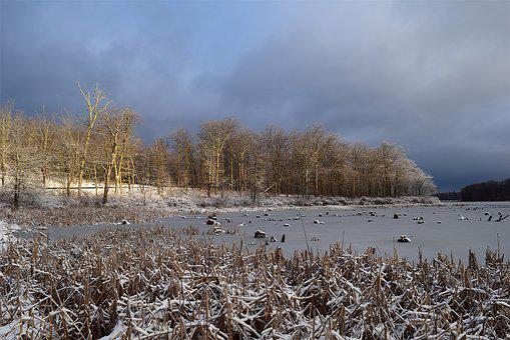 Snow, Sunrise, Lake, Sky, New Jersey, Park, Trees