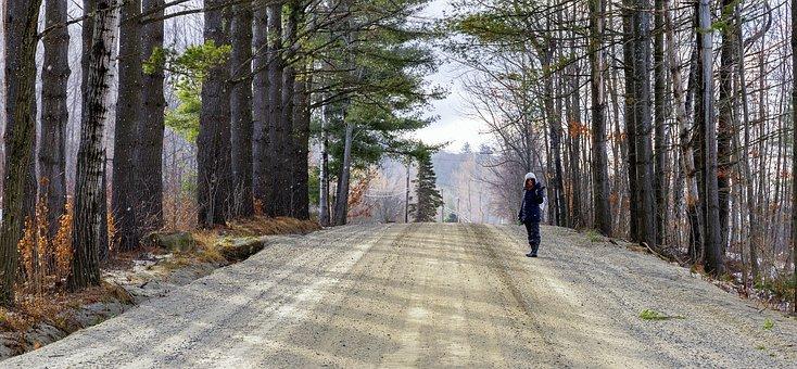Girl, Walking, Road, Dirt, Pine, Trees, Alley, Path