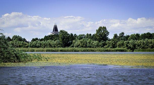 Tisza-lake, Poroszló, Summer, Reeds, Water, Nature