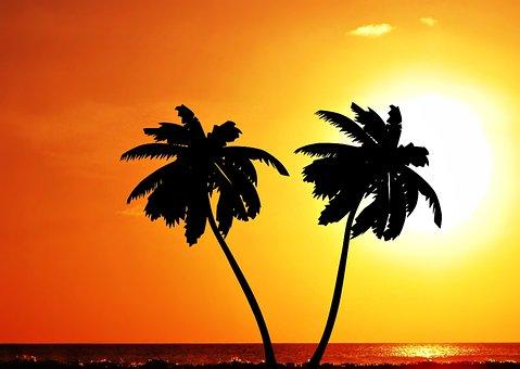 Ceu, Sky, Against Light, Natural, Brazil, Eventide