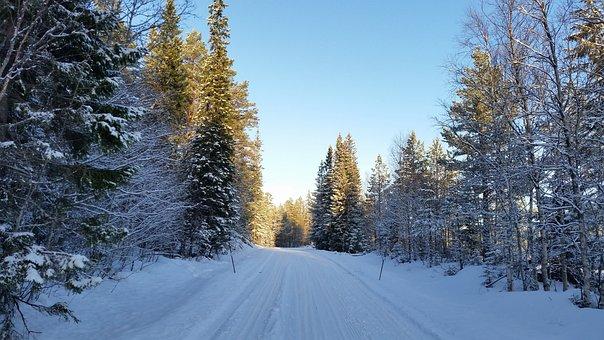 Winter, Winter Landscapes, Snow, Line Of Vision