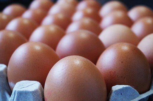 Eggs, Home, Container, Egg White, Yolk