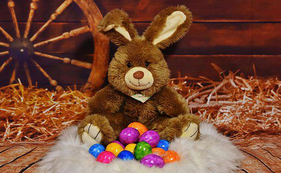 Easter Bunny, Egg, Colored, Colorful, Easter