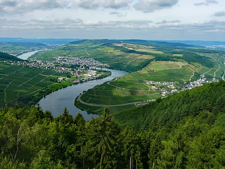 Pölich, Mosel, Sachsen, Germany, Wine, Vineyards