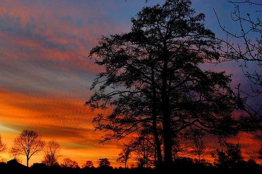 Sunrise, Winter, Morgenstimmung, Winter Sunrise, Skies
