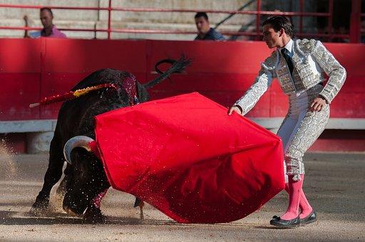 Bullfight, Bulls, Arenas, Beaucaire, Toreador